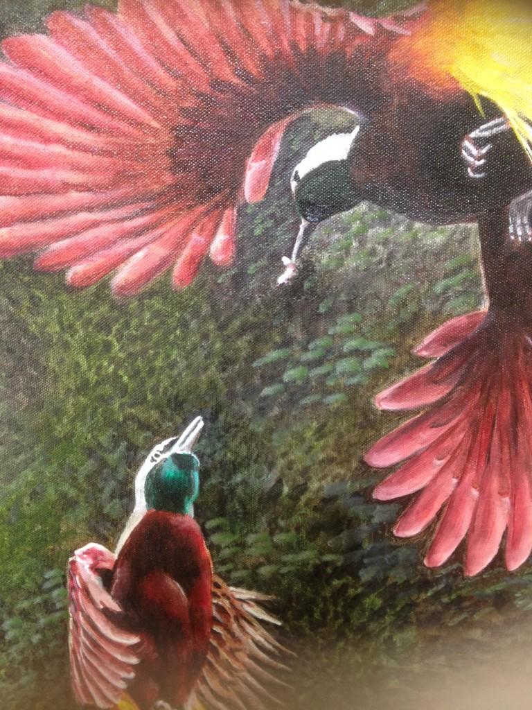 bird of paradise detail heads